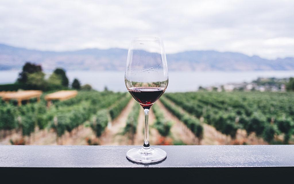 new-york-wine